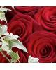 Luxury Grand Prix Rose Hand tied